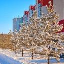 Погода на Южном Урале полна сюрпризов, особенно в феврале.